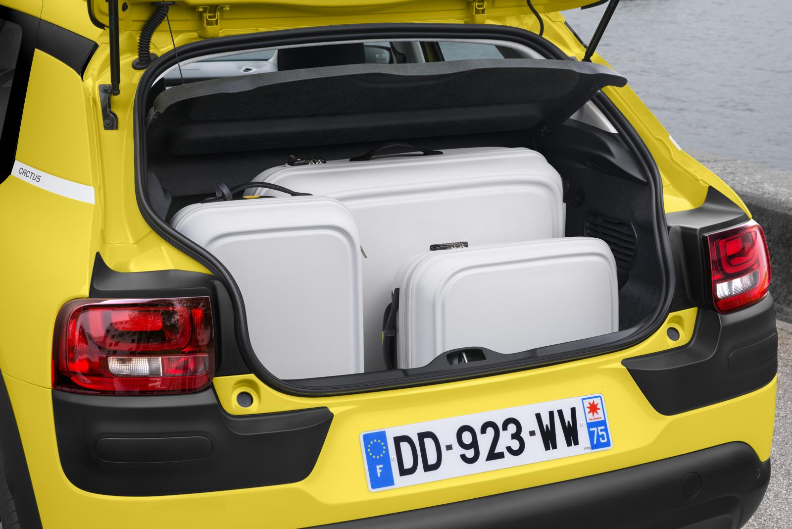 C4 Cactus Feel edition 2014 full boot