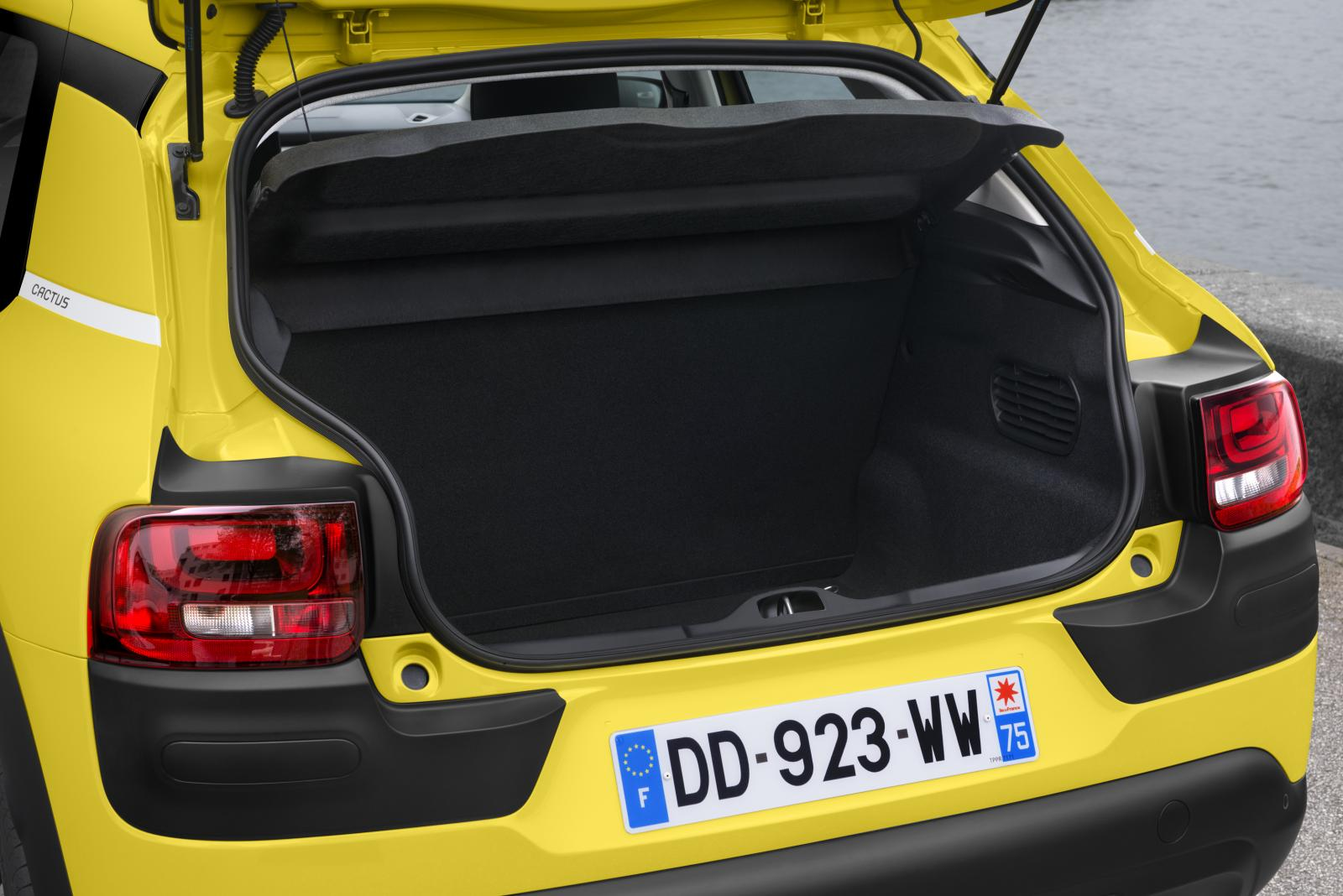 C4 Cactus Feel edition 2014 boot